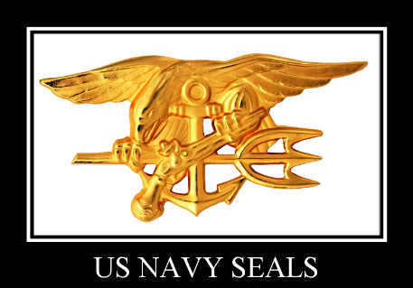 Navy Seal insignia, an elite hard earned emblem